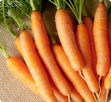 carottes-nu